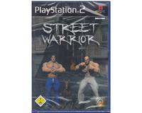 Street Warrior (PS2)