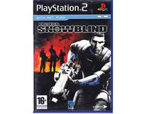 Project : Snowblind (PS2)